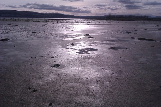 Mudflats, Cardross