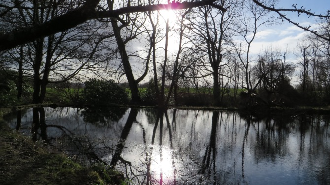 Sunday afternoon walk  in Cardross